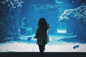 La privacy dei bambini sul web: come gestirla?