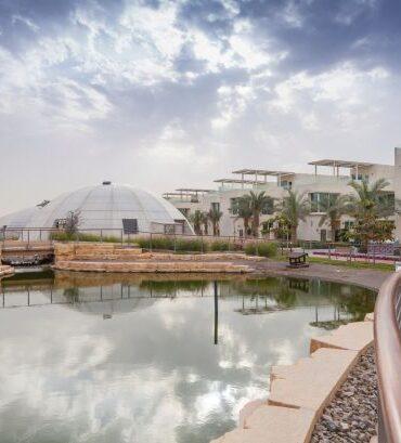 La città sostenibile a Dubai