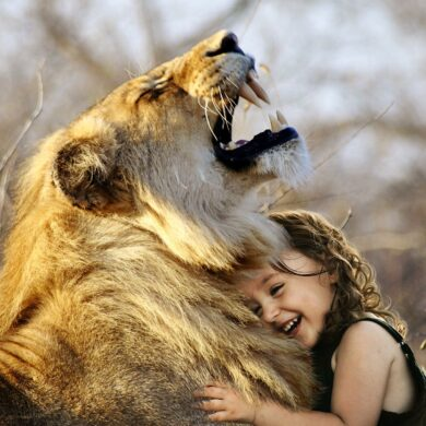 animali abusati