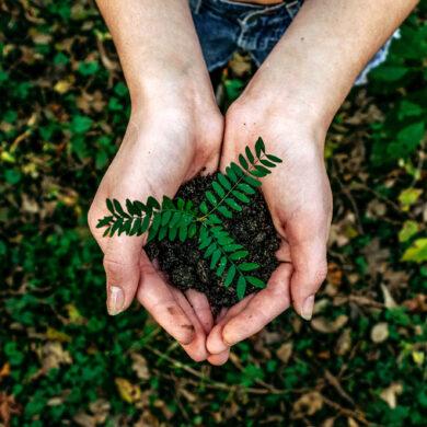Salvare la Terra