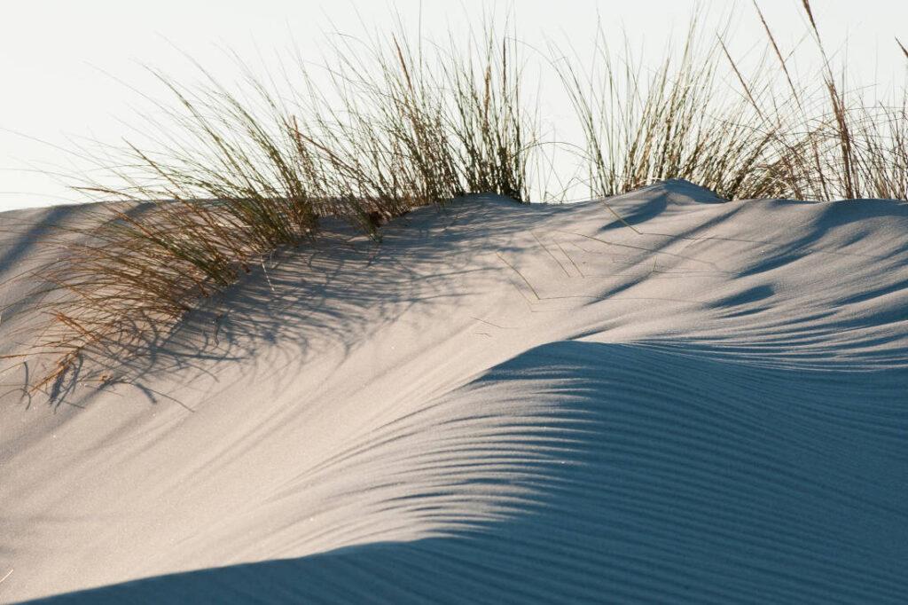 Vacanza green in Sardegna: dune di Porto Pino