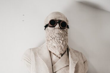 Charles Darwin teoria evoluzione