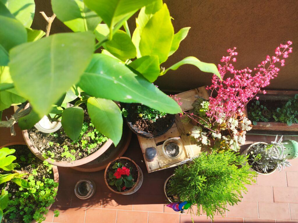 digital decluttering ispirazioni primavera